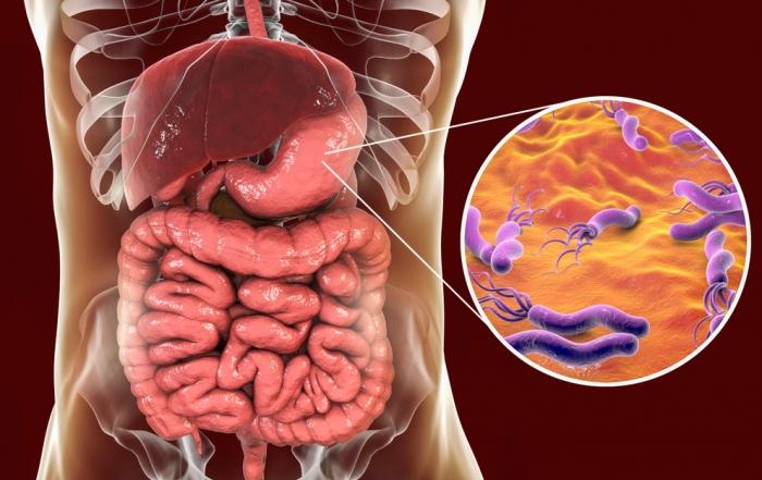 helicobacter-pylori-articol